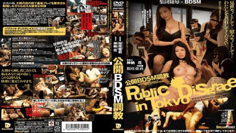 Dream Ticket PDD-002 Jav Rape Public BDSM Training Sakurasaki Hime Kaname Flower Hana Kanou Himeri O