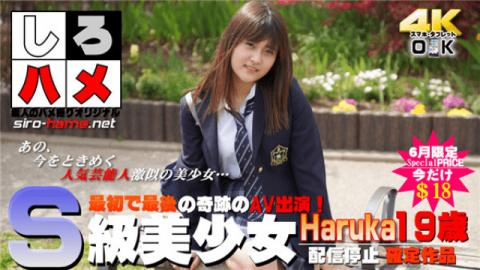 Heydouga 4017-PPV238 Part 5 Shiro hame amateur Haruka S class bishoujo The first and last miracle AV
