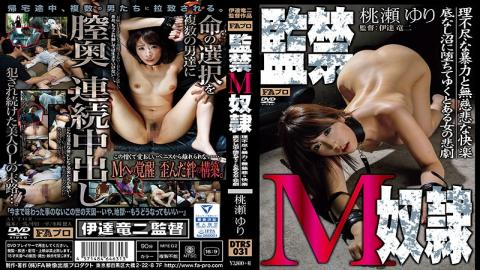 DTRS-031 Confinement M Slave Wanton Violence And Ruthless Pleasure / Bottomless Swamp To Fallen By Y
