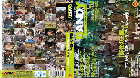 DANDY-462 - Wild Kingdom VOL.3 Africas Oldest Natives And Live Do Natsume Airi - Dandy